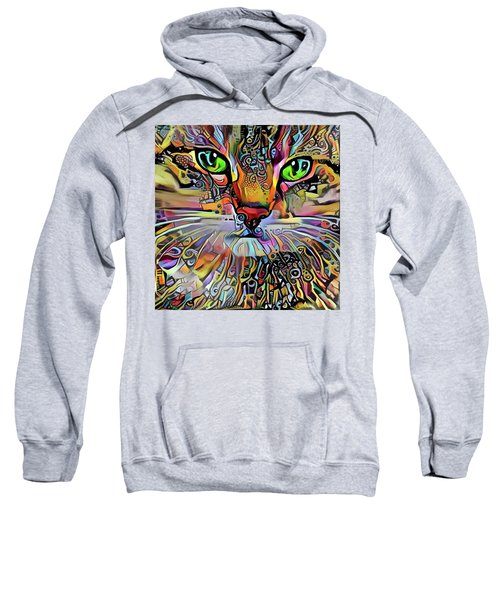 Sadie The Colorful Abstract Cat Sweatshirt