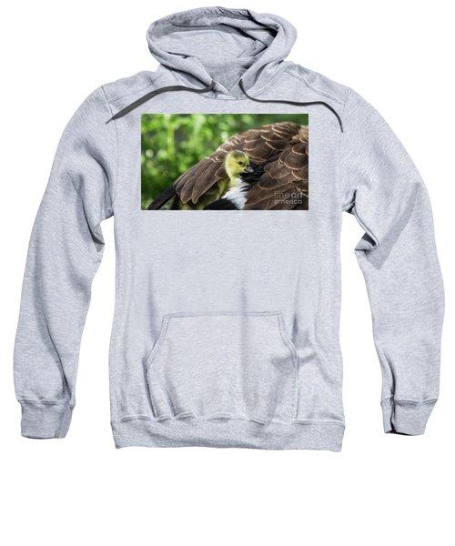 Safe Place Sweatshirt