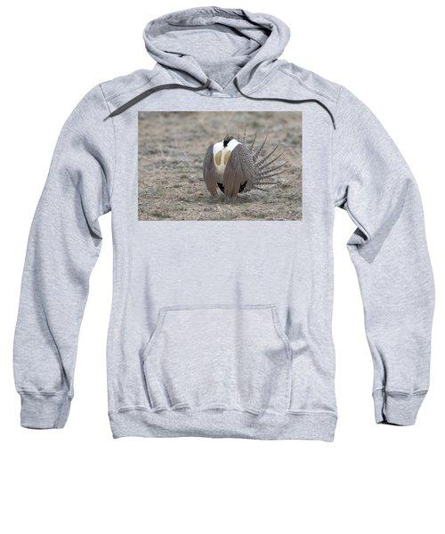 Sage Grouse Sweatshirt