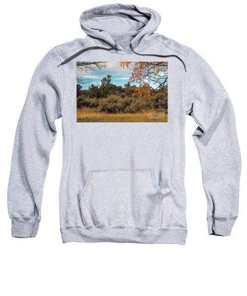 Sagebrush And Lava Sweatshirt