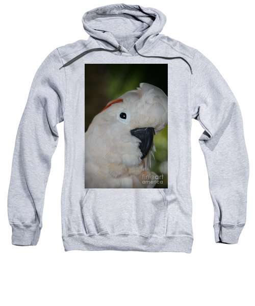 Salmon Crested Cockatoo Sweatshirt by Sharon Mau