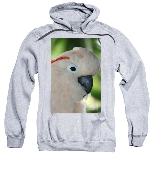 Salmon Crested Moluccan Cockatoo Sweatshirt by Sharon Mau