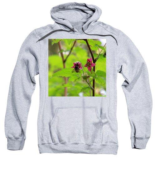 Salmonberry Honey Sweatshirt