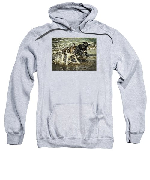 Salt And Shake Sweatshirt