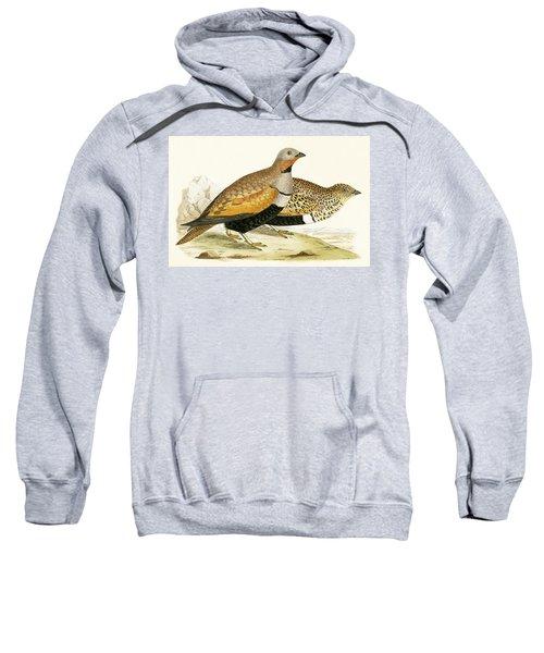 Sand Grouse Sweatshirt