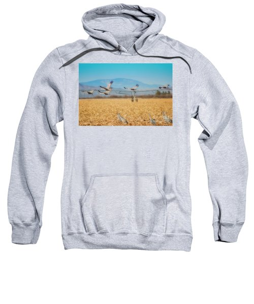 Sandhill Cranes In Flight Sweatshirt