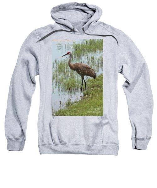 Sandhill In The Marsh Sweatshirt