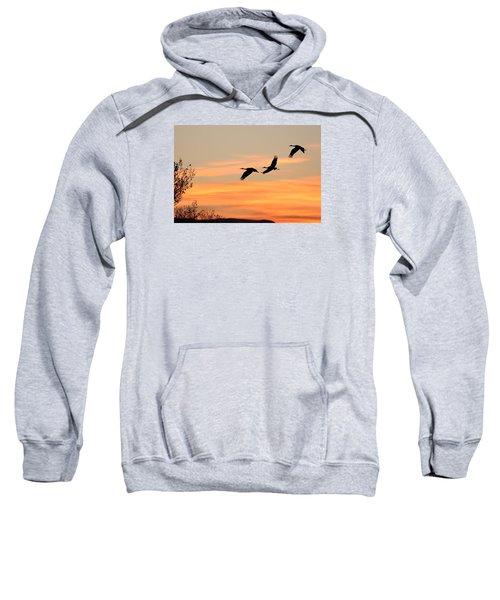 Sandhill Sunrise Three Sweatshirt