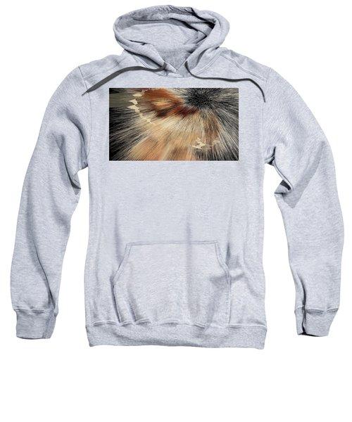 Sandy Light Speed Sweatshirt