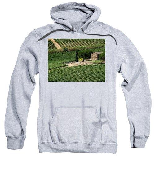Sangiovese Vineyard Sweatshirt