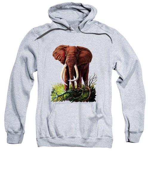 Satao II - The Elephant Sweatshirt