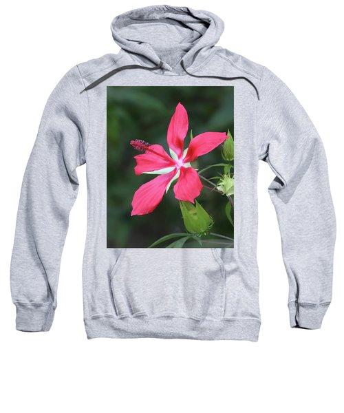 Scarlet Hibiscus #4 Sweatshirt