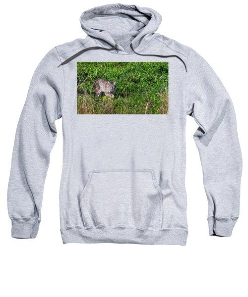 Scars Stalk  Sweatshirt