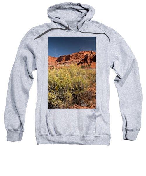 Scenery Capital Reef National Park Sweatshirt