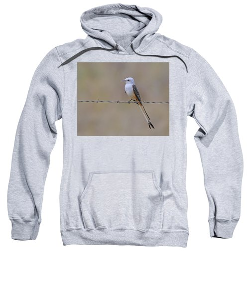 Scissor-tailed Flycatcher Sweatshirt by Tony Beck