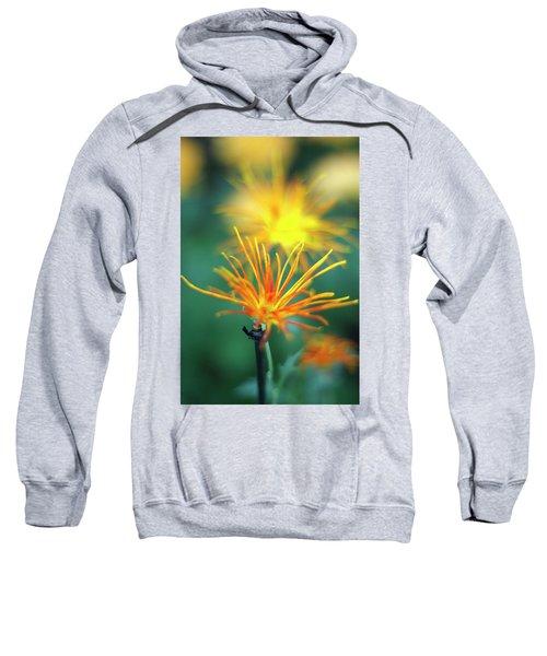 Scraggly Mum Sweatshirt