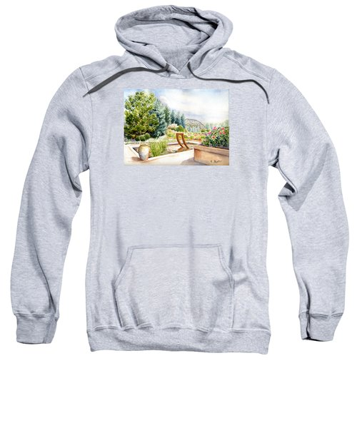 Sculpture Pool At Denver Botanic Gardens Sweatshirt