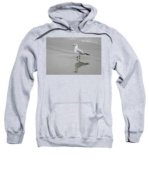 Sea Gull Walking In Surf Sweatshirt