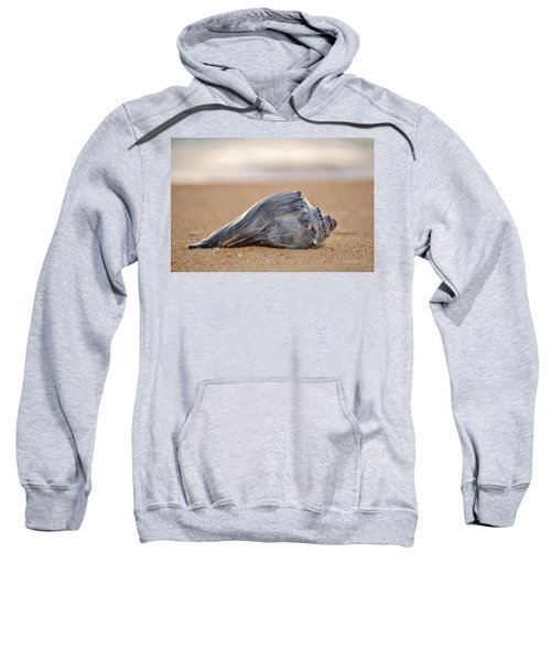 Sea Life Sweatshirt