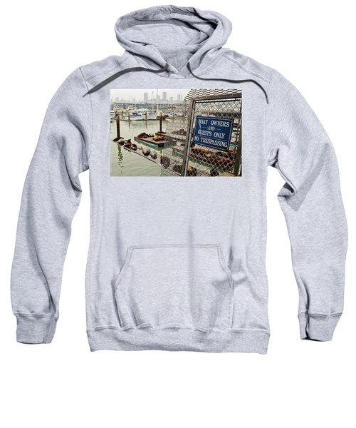 Sea Lions Take Over, San Francisco Sweatshirt