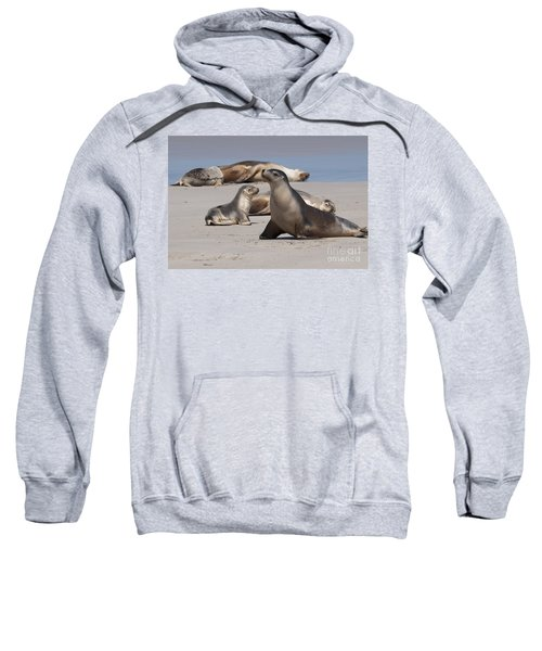 Sweatshirt featuring the photograph Sea Lions by Werner Padarin