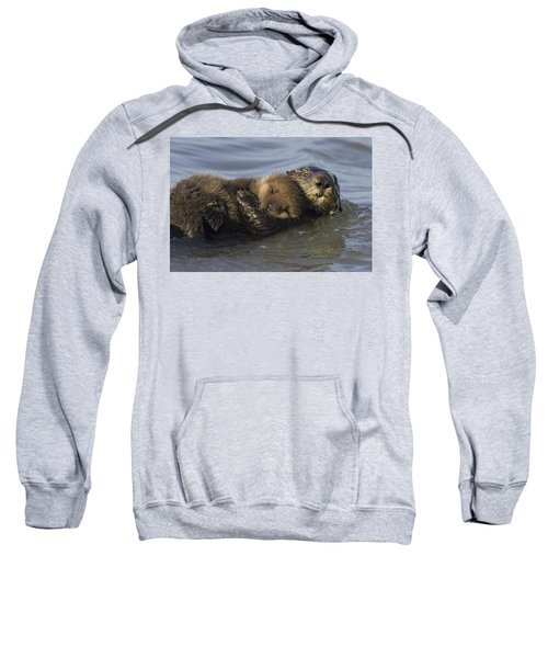 Sea Otter Mother With Pup Monterey Bay Sweatshirt by Suzi Eszterhas