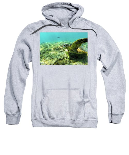 Sea Turtle #2 Sweatshirt