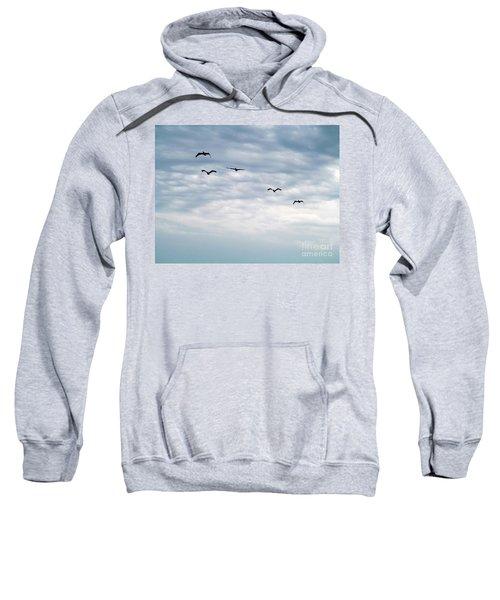 Seabirds In Flight Sweatshirt