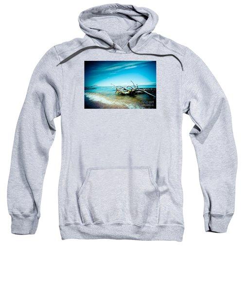Seacost With Old Tree In Water Kolka Sweatshirt
