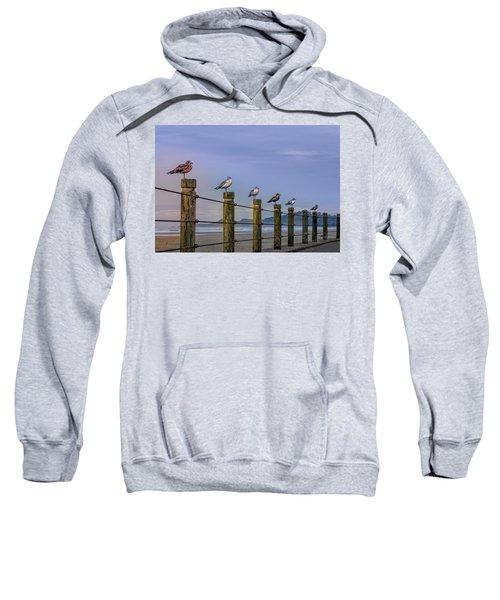 Seagull Lineup Sweatshirt