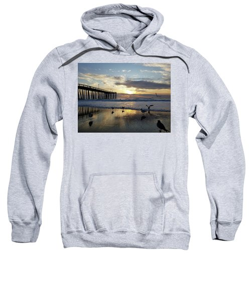 Seagulls And Salty Air Sweatshirt