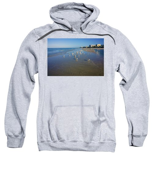 Seagulls And Terns On The Beach In Naples, Fl Sweatshirt