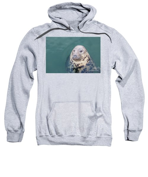 Seal With Long Whiskers With Head Sticking Out Of Water Sweatshirt