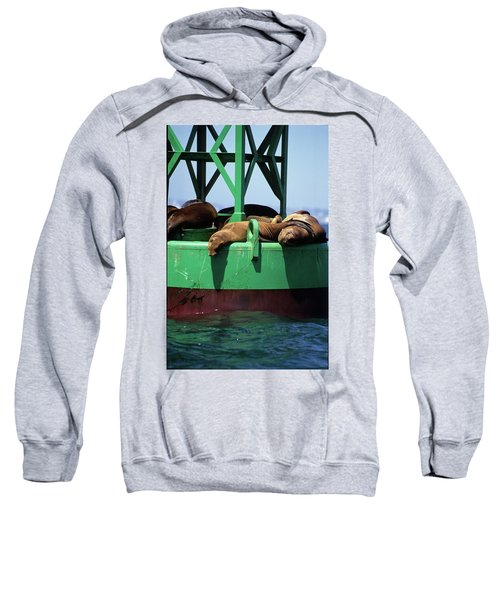 Seals On Channel Marker Sweatshirt