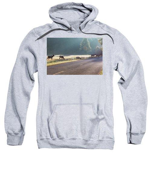 Searching For Greener Grass Sweatshirt