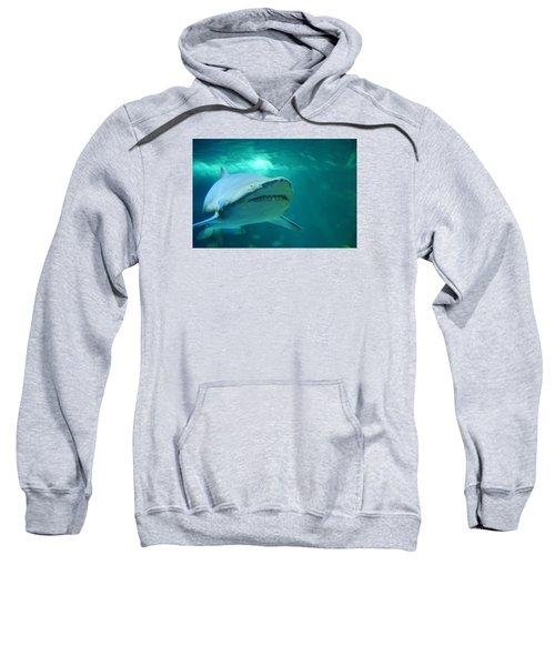 Season Eatings 1 Sweatshirt