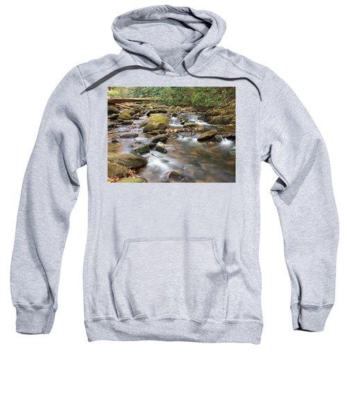 Secluded Sweatshirt