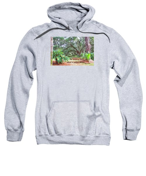 Secret Pathway Sweatshirt