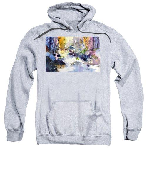 Secret Falls Sweatshirt