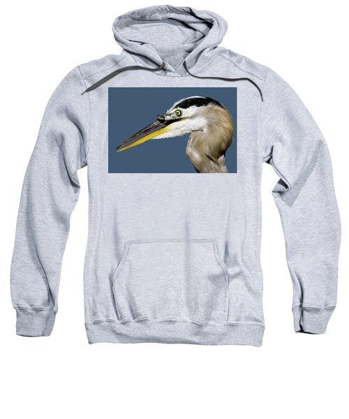 Seeing Your Captor Eye To Eye Sweatshirt