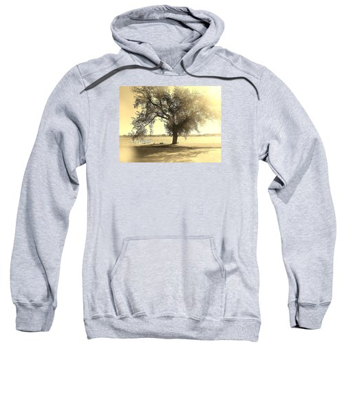 Sepia Colors In A Tree Sweatshirt
