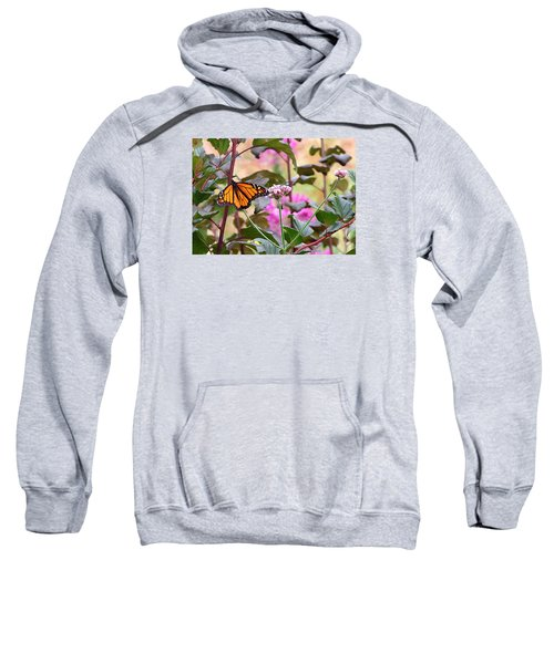 September Monarch Sweatshirt