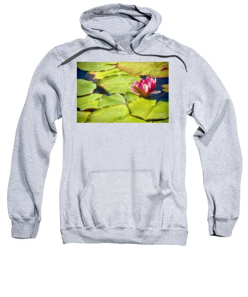 Serenity And Solitude Sweatshirt by Peggy Hughes