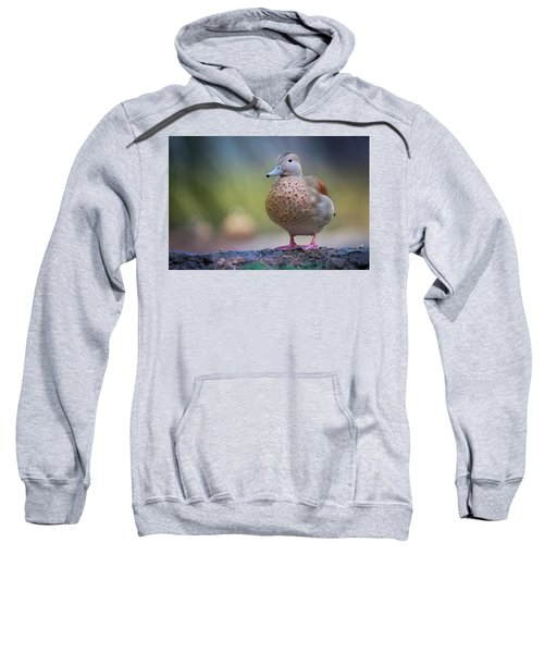 Seriously Cute Sweatshirt