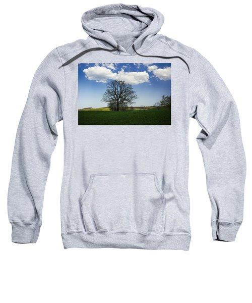 Shade Sweatshirt