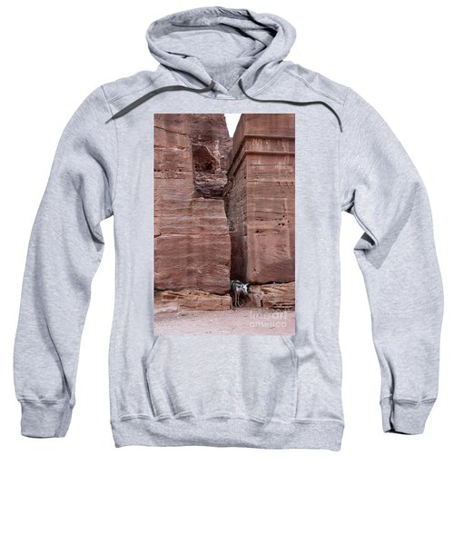 Sweatshirt featuring the photograph Shade Is Good by Mae Wertz