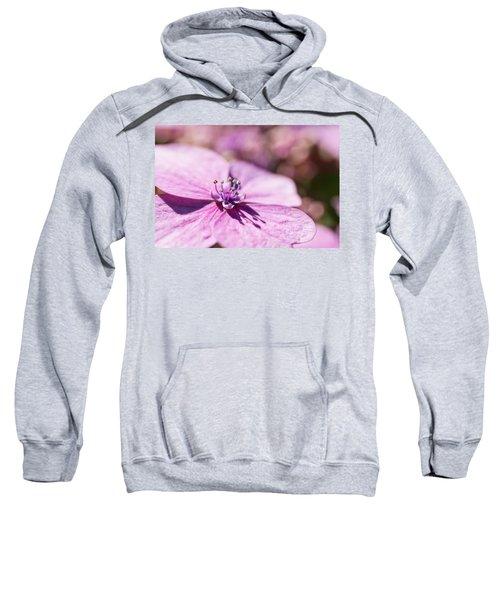 Shadows In Pink Sweatshirt