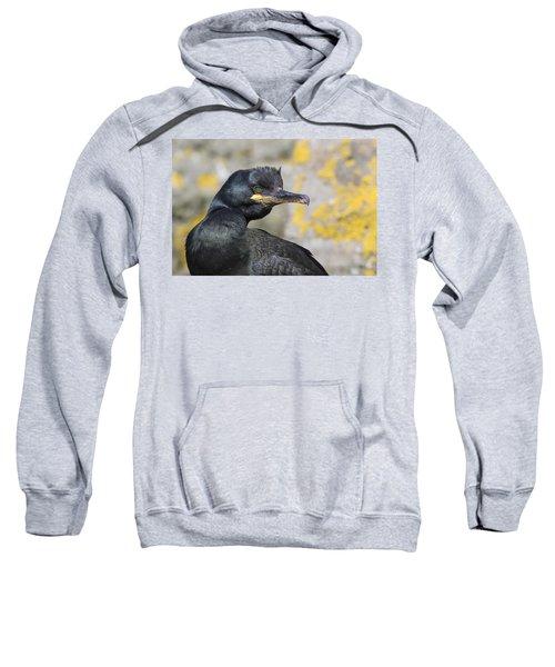 Shag Sweatshirt