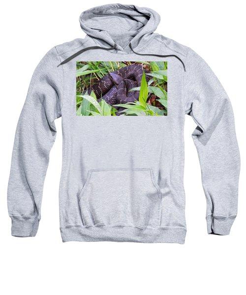 Shhhh1 Sweatshirt