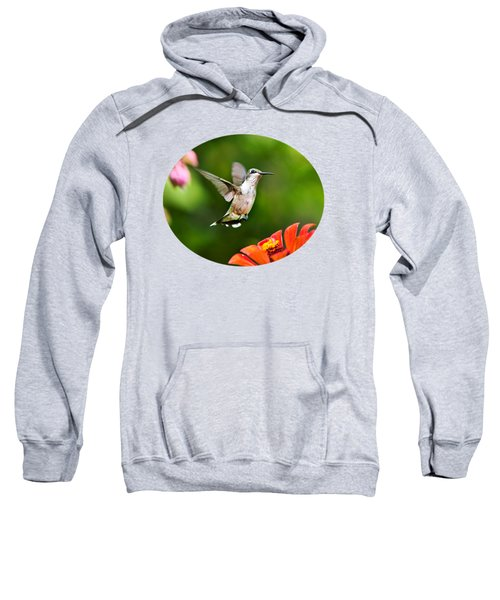 Shimmering Breeze Hummingbird Sweatshirt